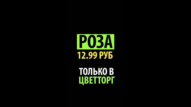 Tula stories lenina_x264