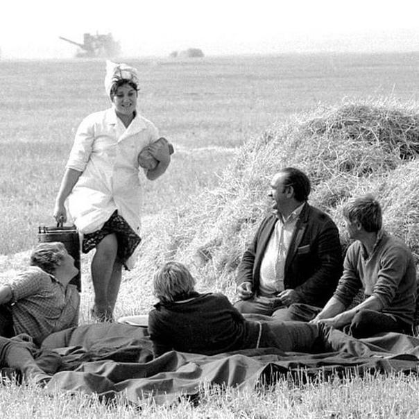 Девушка привезла обед механизаторам совхоза Шуйский, 1984 г