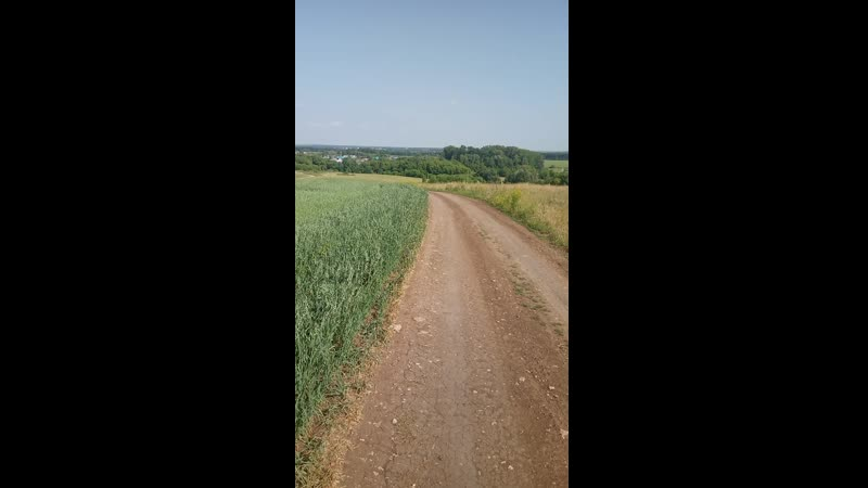 Зелёные просторы Татарстан Лето 2020