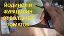 Мой новый состав ЙОДИНОЛ ФУРАЦИЛИН от болезней томатов и огурцов