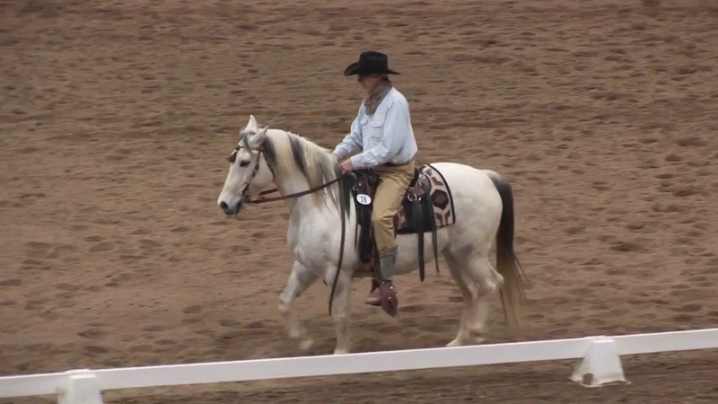 Keith Jacobson and Bosley Working Equitation Expo 2017