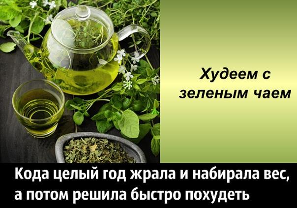Почему Зеленый Чай Помогает Похудеть. Зеленый чай помогает похудеть – правда или миф