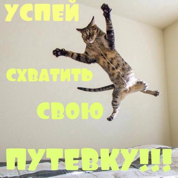 Y4OHUf l qM Сочи из СПб 10.12.19 от 5900р. 5дн 3* ВВ