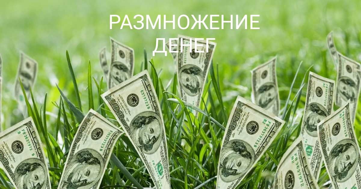 силаума - Программы от Елены Руденко - Страница 2 -NbAzHMDHYg