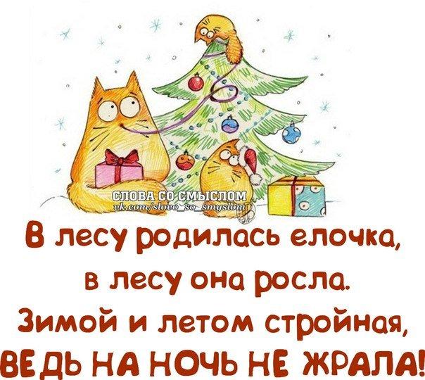 Картинка со смыслом про новый год