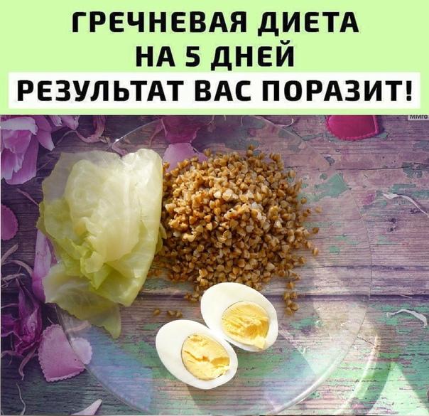 Диета Гречка И Яйца Отзывы