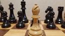 Шахматы. Известная ловушка. Слон ставит мат. Играем без ферзя. Обучение шахматам.