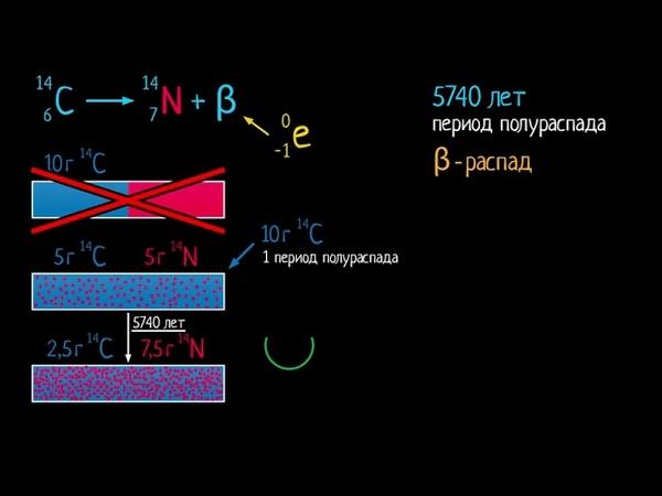 Период полураспада и радиоуглеродный анализ видео 20 Квантовая физика Физика
