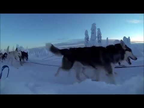 Агент Смит завалю снегом