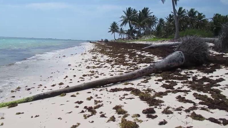 Punta Cana May 2019 * 1305 * MVI 1794