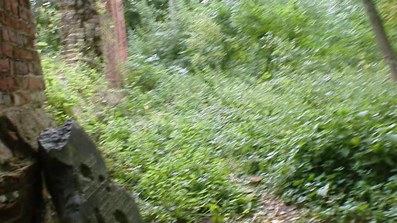 Никольская кирха у замка Бальга