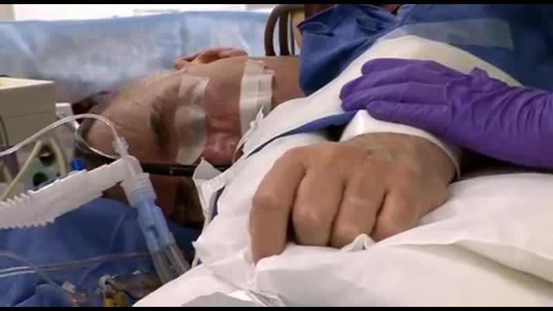 BBC Борьба за жизнь Средний возраст 5 серия из 6