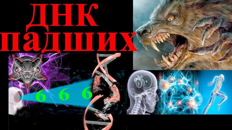 ДНК падших