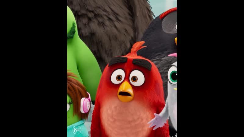 Angry Birds 2 в кино 2D 3D в кинотеатре Galaxy Star с 15.08.2019