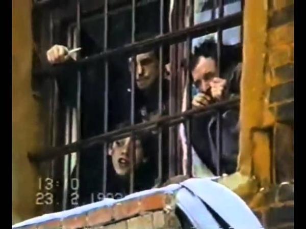 сдохнем мы здесь в тюрьме