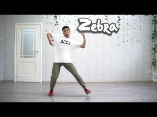 Hip-hop zebradance tim_chokolate
