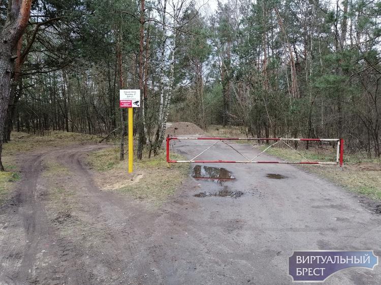 Площадку, которую стритрейсеры приготовили для тренировок в лесу, заблокировали