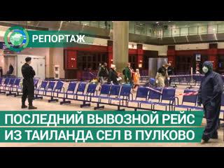 Последний вывозной рейс из Таиланда сел в Пулково