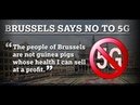 BRUSSELS SAYS NO TO 5G: SAYS WE WILL NOT USE OUR CITIZENS AS HUMAN GUINEA PIGS
