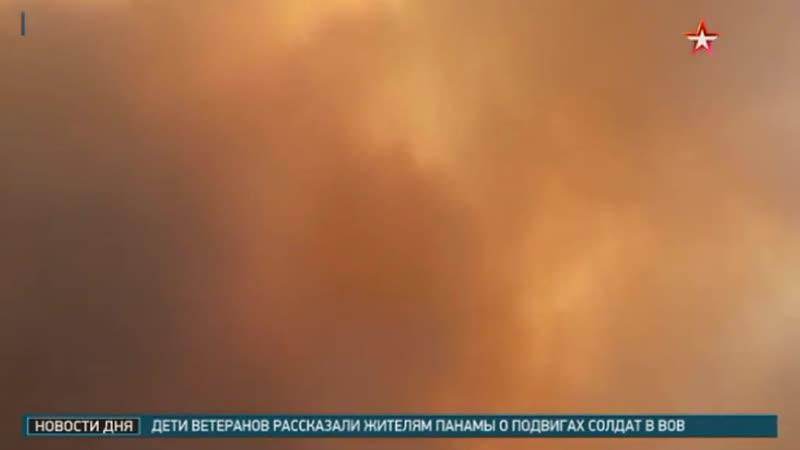 Власти Бразилии «уличили» Ди Каприо в поджогах лесов Амазонии