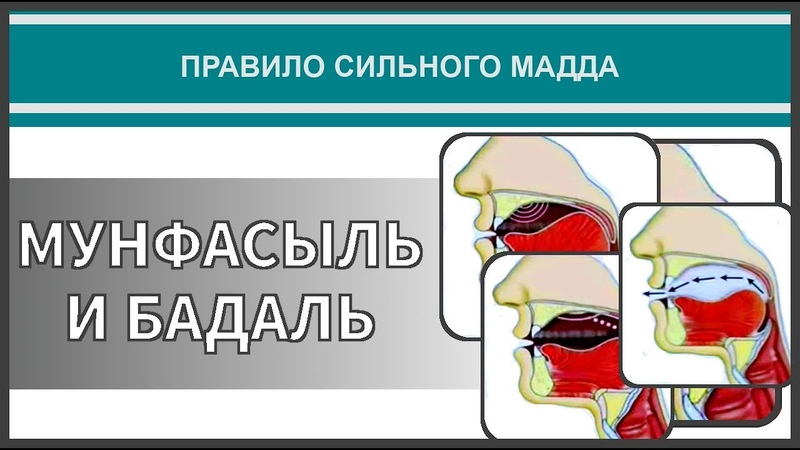 Айман Сувейд 40 Правило сильного мадда МУНФАСЫЛЬ И БАДАЛЬ с субтитрами на русском