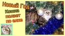 Кошка сидит на елке Смешная кошка портит новогоднюю елку
