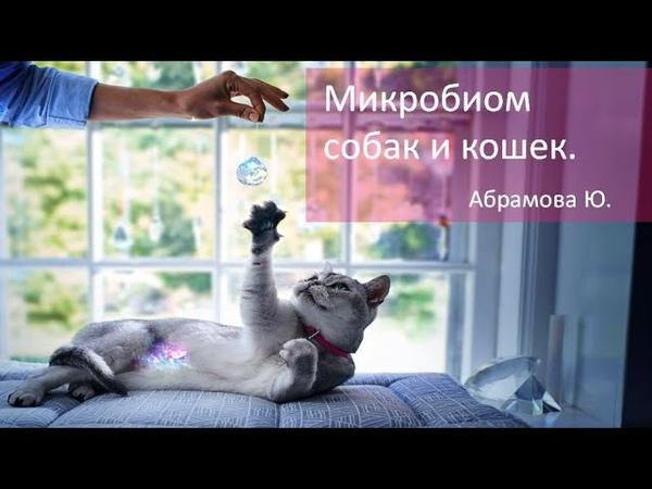 Микробиом собак и кошек