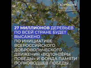 В память о ветеранах Великой Отечественной войны будет высажено 27 миллионов деревьев.