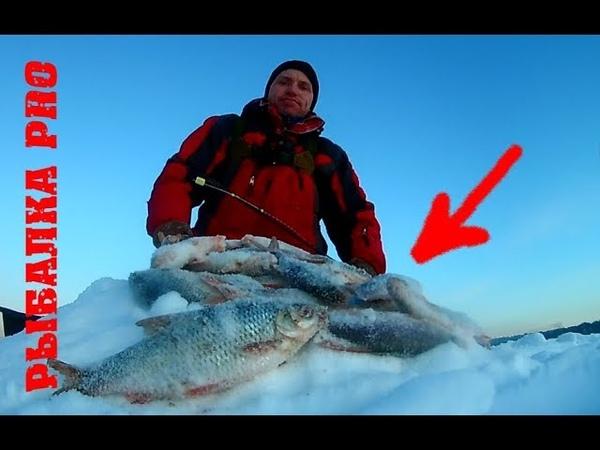 ЭТА МОРМЫШКА КОСИТ ПЛОТВУ ЗИМНЯЯ РЫБАЛКА 2020 Ловля крупной плотвы Отличный улов на гвоздекубик