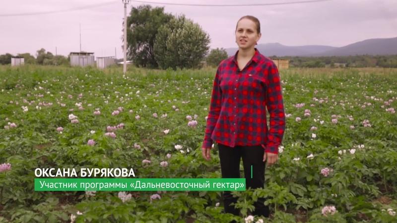 Фермер Оксана Бурякова Малый бизнес в лицах
