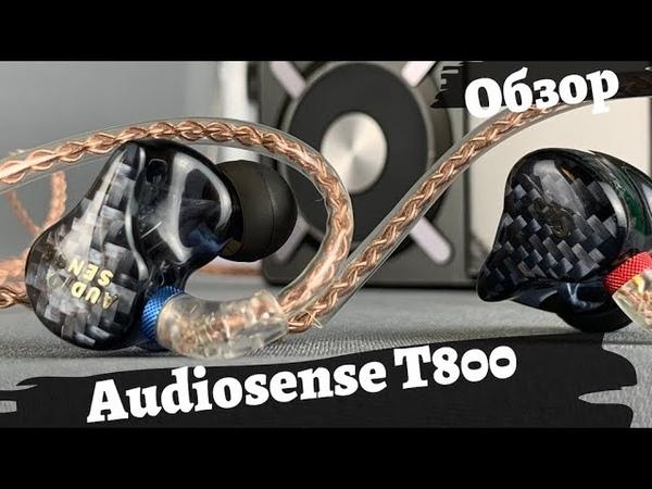 Обзор арматурных наушников Audiosense T800 Принцесса на горошине