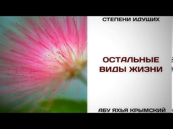 133 Остальные виды жизни Абу Яхья Крымский