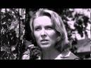 Тема из к/ф Родная кровь1963