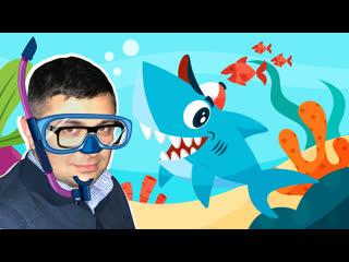 Какие акулы самые опасные с Александром Толмачевым
