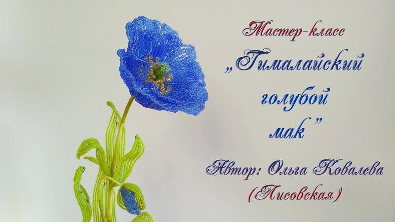 МК ГИМАЛАЙСКИЙ ГОЛУБОЙ МАК ИЗ БИСЕРА Мастер класс Ольги Ковалевой Лисовской Цветы из бисера