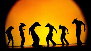 Pilobolus Dance Theatre - Shadowland - Sadler's Wells is Dance