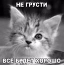 Фотоальбом Гульсум Вильдановой