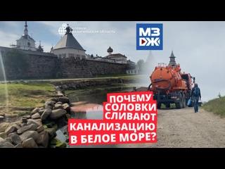 МЗЖ: Сточные дела Соловков
