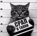 Персональный фотоальбом Артема Миронова