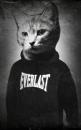 Личный фотоальбом Артёма Темченко