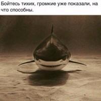 Фотография Адама Исаева ВКонтакте