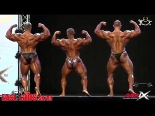 Алексе Лесуков против Федерова и Шабуни Позирования bodybuilding legend