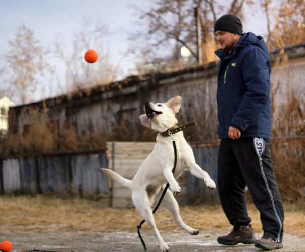 Марк Боровков, 28 лет, Екатеринбург, Россия