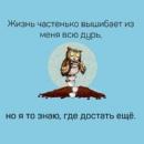 Дмитрий Колмаков фотография #23