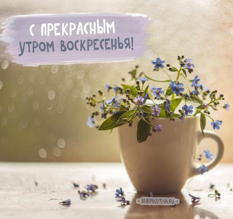photo from album of Ekaterina Boriskina №7