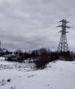 Исаева Алёна | Санкт-Петербург | 8