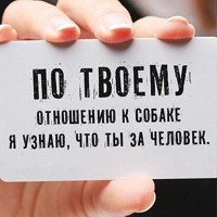 Фотография Olga Ivanova