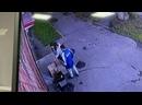 Видео от «Хатико» - защита животных в г. Кызыл