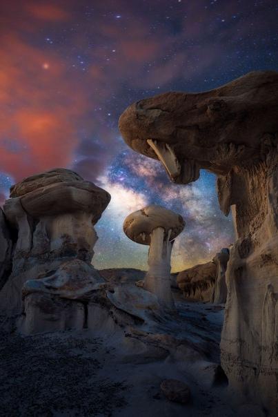 «Колдовской гриб» Скальное образование в форме гриба возвышается в бесплодных землях Нью-Мексико, а Млечный Путь проглядывает сквозь облака, которые только добавляют акцент на этом снимке. Они
