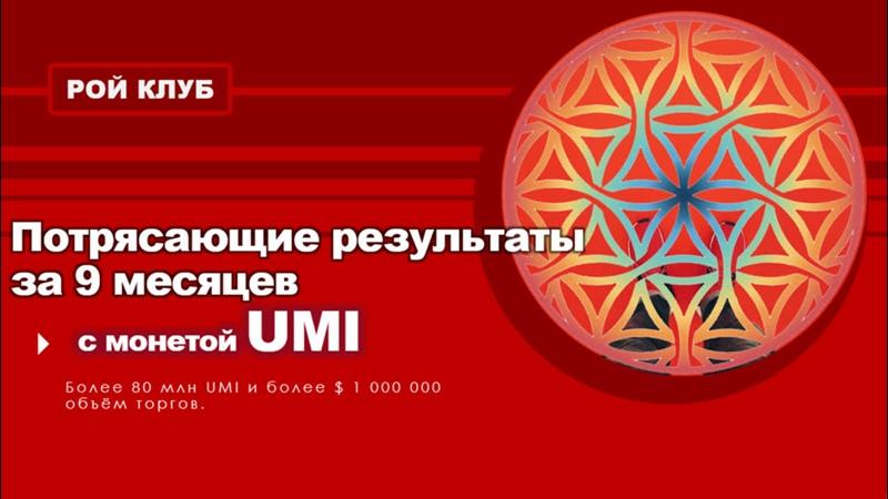 Рой Клуб потрясающие результаты за 9 месяцев с монетой UMI